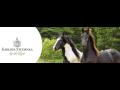 Týdenní i víkendový pobyt v Karlově Studánce v Jeseníkách s návštěvou Eko farmy v Karlovicích