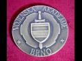 Reprezentační medaile zlacené, stříbrné nebo měděné s povrchovou úpravou