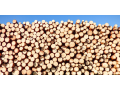 Prodej stavební řezivo, dřevo na střechu, strop, altánek či pergolu Vysočina