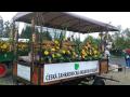 Středoškolské studium v oborech Vinařská a ovocnářská technologie, Okrasné zahradnictví
