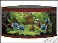Pla�ek s.r.o. akvarijn� pot�eby velkoobchod, akv�ria