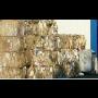 Systémy zpětného odběru a využití odpadů z obalů v členských státech EU - principy fungování
