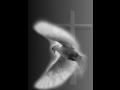 Pohřební služba Bělá pod Bezdězem – zajistí pietní průběh smutečního obřadu