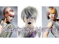 Pánské, dámské kadeřnictví -profesionální úprava, stříhání, barvení vlasů
