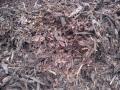 Drcená kůra modřínová, smíšená - prodej čerstvé mulčovací kůry