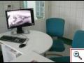 Veterin�rn� klinika