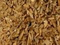 Zpracov�n� biomasy Praha