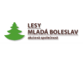 Palivové dřevo Mladá Boleslav – dobře vyschlé a nařezané za příznivé ...