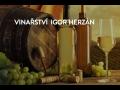 Rodinné vinařství s tradicí, lahvová i sudová vína bílá, červená, růžová z Velkých Bílovic