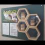 Prodej chutného květového včelího medu přímo od včelaře