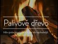 Palivové dřevo s vysokou výhřevností, prodej, doprava a složení dříví, okres Břeclav