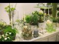 Velkoobchod květin i doplňků – široký výběr a individuální přístup k Vaší spokojenosti