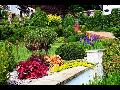 Návrhy a realizace zahrad, terénní úpravy, výsadba rostlin, údržba