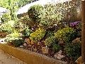 Zahradnictv Petr Křeček, Beroun, realizace zahrad, výsadba a dodání dřevin, květin, údrža a péče
