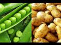 Farma AGRO-ZOO Ing. Josef Vendolský, pěstování a prodej brambor, hrachu, kukuřice, řepky