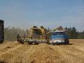 AGRO PODLESÍ, a.s., okres Kutná Hora, rostlinná výroba, ěstování obilí