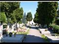 Pohřební služba Český Krumlov