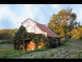 Ovoce, víno Jižní Morava, Břeclav
