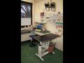 Veterin�rn� klinika, veterin��, vakcinace, �ipov�n� �umperk