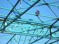 Kovovýroba, ocelové konstrukce, zámečnické práce Liberec.