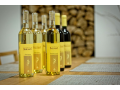 Zažijte svatbu v prostředí nádherných vinic