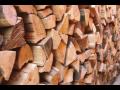 Prodej dřeva pro nejrůznější účely, kulatina i palivové dříví