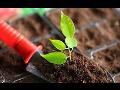 Rostlinná a živočišná výroba Plzeň-sever