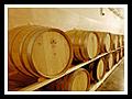 Kvalitní jakostní a přívlastková vína, Velké Bílovice