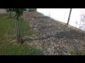 Prodej - zahradní zemina, substráty, zahradní úpravy Opava