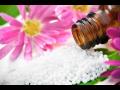 Homeopatická lékarna - prodej homeopatik včetně odborného poradenství