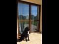 Posuvné dveře a okna z kvalitních německých profilů GEALAN