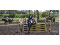 Střední škola zemědělská a veterinární Lanškroun, chov koní, jezdectví, veterinářství