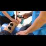 Největší ambulantní rehabilitační a fyzioterapeutické pracoviště v Praze