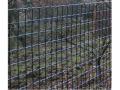 Plotové centrum dodá pletivo na ploty - pozinkované, PVC, lesnické, svařované pletivo