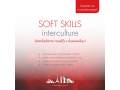 Special language intensive courses SIK, Soft Skills for key employees the Czech Republic