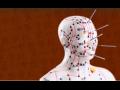 Škola tradiční čínské medicíny, rozšiřující studium akupunktury, fytoterapie i tuiny
