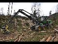 Těžba dřeva harvestorovou technologií, přibližování a kácení dřevin