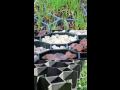 Zatravňovací dlažba pro zpevnění travnatých a štěrkových ploch
