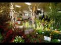Mezinárodní zahradnická výstava a veletrh, letní trhy Flora
