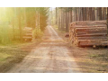 Lesnická činnost, těžba a přibližování dřeva, lesní hospodářství