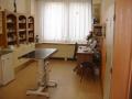 Veterina, vyšetření kulhání, ortopedie Šumperk