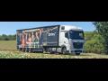 Autodoprava tuzemská i zahraniční, přeprava v rámci celé Evropy