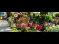 ASB GRÜNLAND spol. s r. o., zahradnické potřeby pro krásnou zahradu