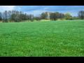 Živočišná a rostlinná výroba, ovocnářství, chov skotu, výroba mléka Žlunice