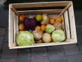 Výroba beden pro zemědělství na zakázku - dřevěné bedny na mrkev, kořenovou zeleninu