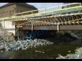 Mostní dřevěné konstrukce, ramenáty pro opravu a výstavbu mostů, podjezdů, nadchodů a podchodů