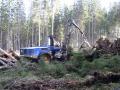 Přibližování dřeva lanovými systémy, šetrná těžbu dřeva - Šumava