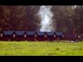Ubytovna na Vysočině, příjemné ubytování v chatkách přírodního autocampu Borovinka