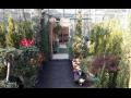 Velkoobchod a maloobchod s okrasnými dřevinami a rostlinami, nové okrasné trávy a trvalky Brno
