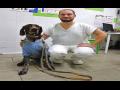 Veterinární ordinace Brno -  nonstop pohotovost na mobilu 777 478 007